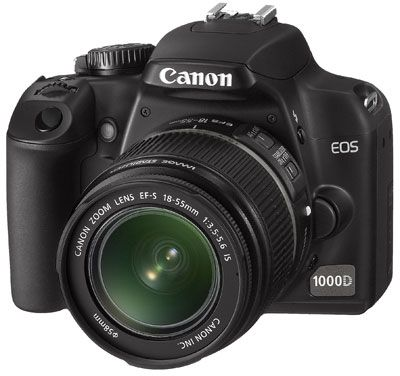 Canon Rebel~I have, just need to learn how to use it now