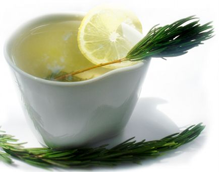 Pine Needle Tea and other fantastic remedies & potions (Pine needles are Anti-Fungal, Anti-Bacterial, Anti-Viral, AntiOxidant & Anti-Aging, Helpful for Weight, Cholesterol & High blood pressure, Stimulating to the Liver AND a cup of pine needle tea may supply five times as much vitamin C as in a lemon!)De Alecrim, Pine Needle Teas, Chá De, Chá Alecrim, Chá Revigor, Healthy Teas, Rosemary Teas, Chás De, English Style