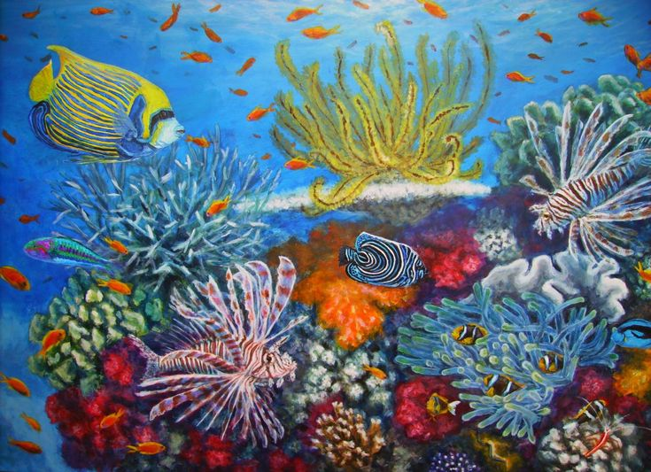 Pin by Lily Nguyen on underwater coral reef | Pinterest ...