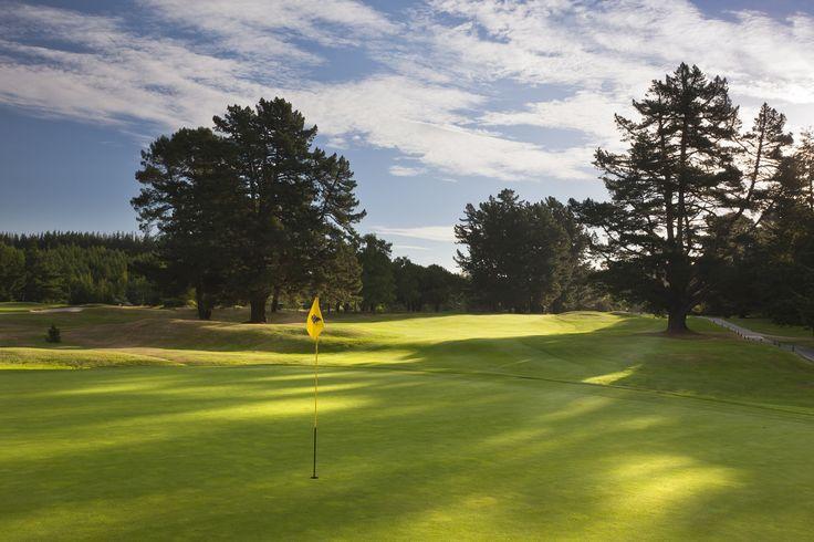 7th green, Wairakei Golf + Sanctuary