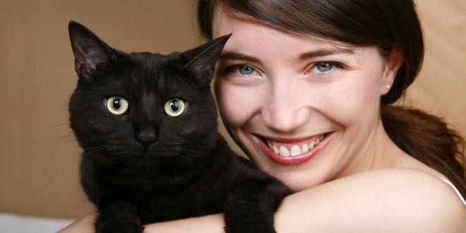 Descubre aquí la verdad sobre los encantadores de gatos y comprueba si tu gato necesita de este profesional. Clic Aquí>>> http://sobreperrosygatos.com/encantador-de-gatos/