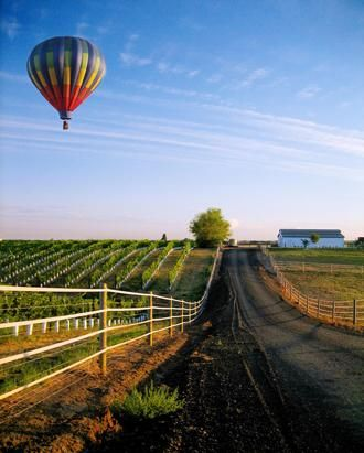 Walla Walla, Washington is the perfect small town getaway for food lovers and wine enthusiasts! - I want to be in the hot air balloon!!!