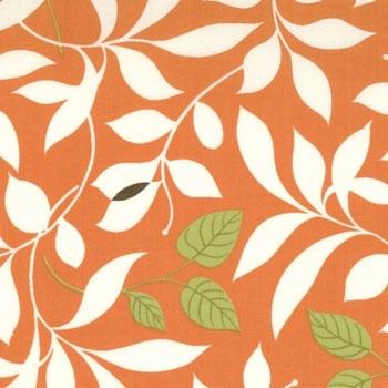 Chrysalis Butterfly Garden in Orange