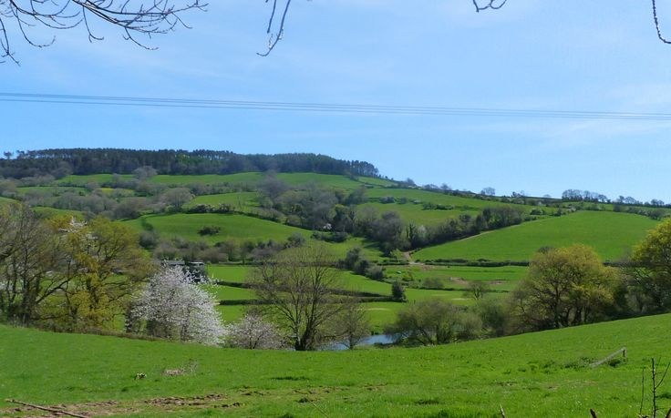Across the Otter Valley