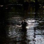 Isarhunderunde 11: Würmrunde von Starnberg nach Gauting
