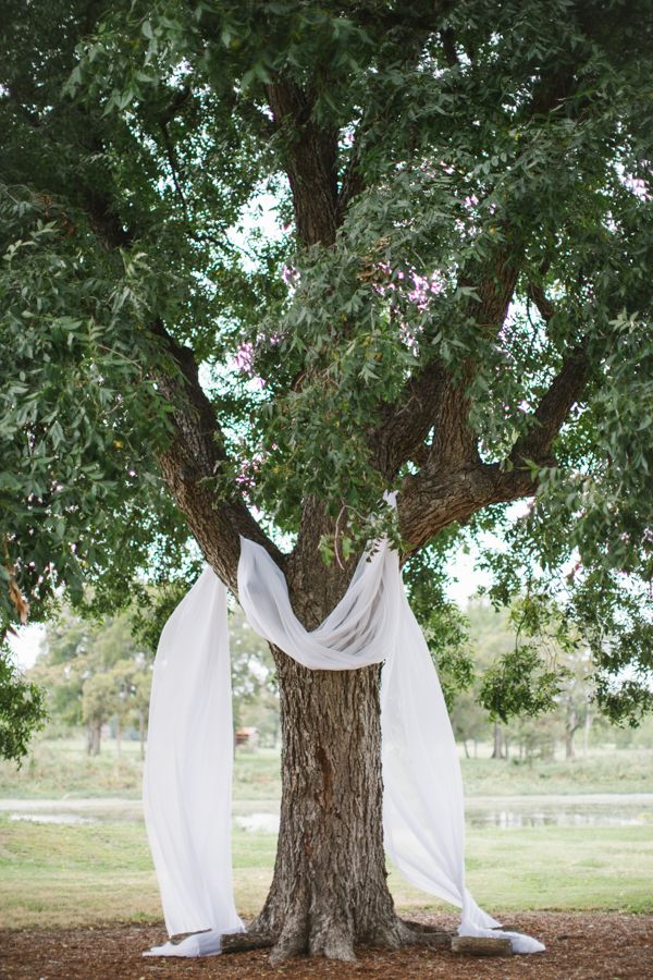 drape fabric over a tree to have simple but stunning wedding ceremony #diy #wedding #weddingchicks http://www.weddingchicks.com/2014/01/24/true-love-texas-wedding/