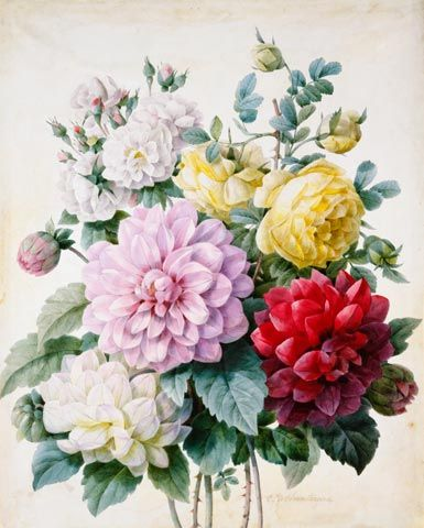 Camille de Chantereine, Bouquet di Dalie e Rose