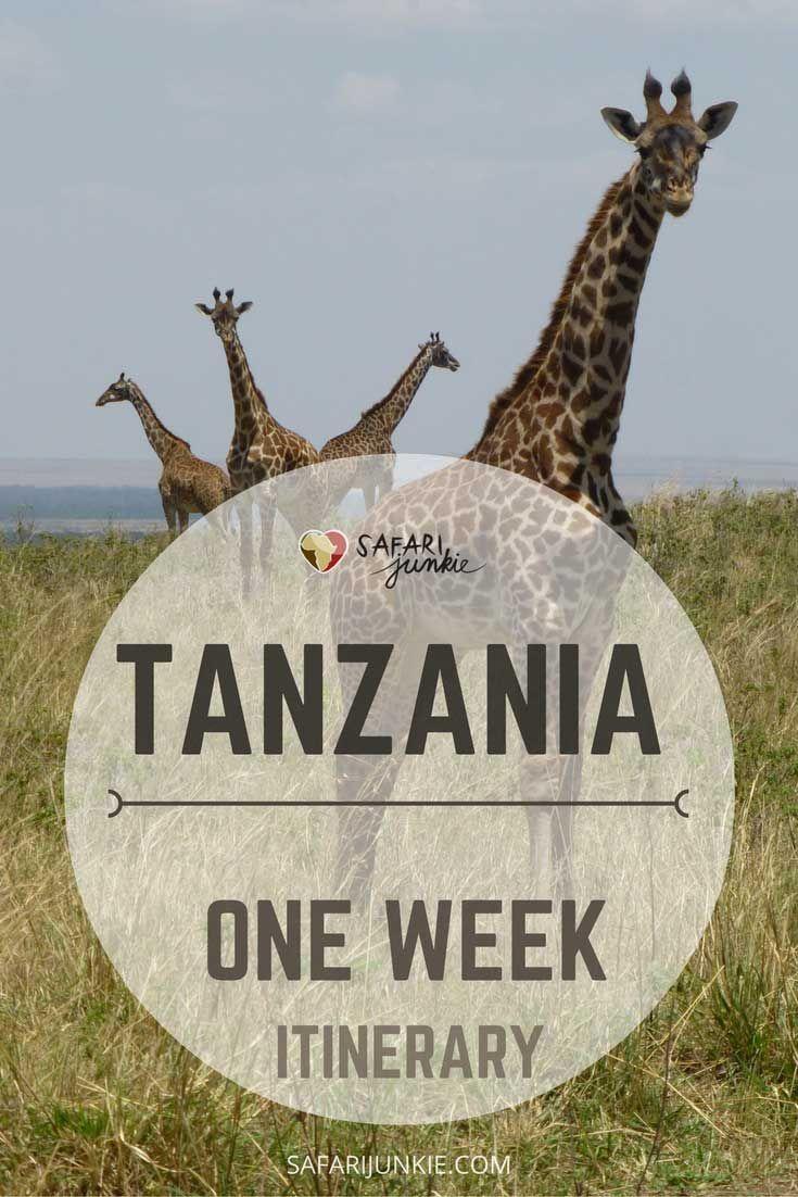 Tanzania One Week Itienrary Ideas