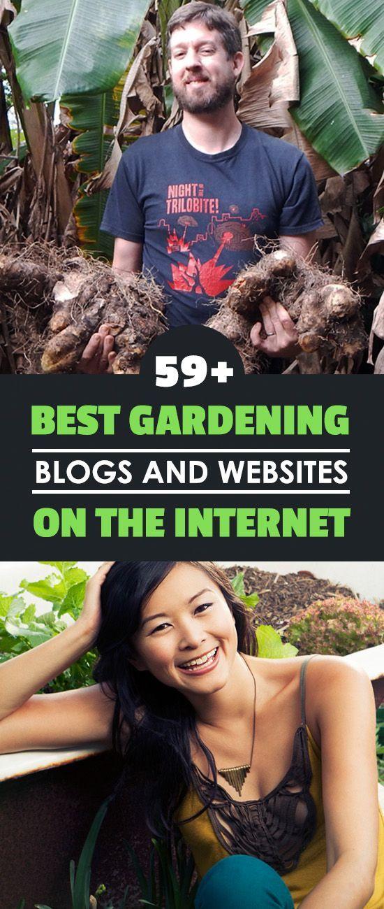 102347 best great gardens  u0026 ideas images on pinterest