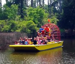 Airboat Adventures - Panama City Beach, Florida | Attractions | Alligators | Eco Tours | Swamps | Family Fun | West Bay | Eagles | Dolphins