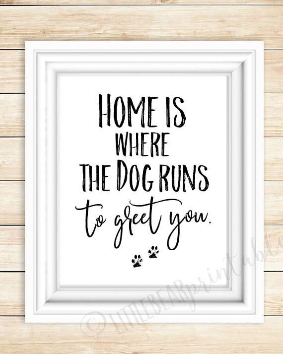 Thuis is waar de hond loopt te begroeten u ik hou van mijn
