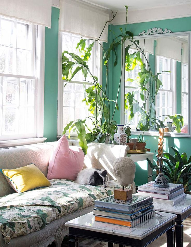 Best 25+ Mint green walls ideas on Pinterest | Mint walls, Mint ...