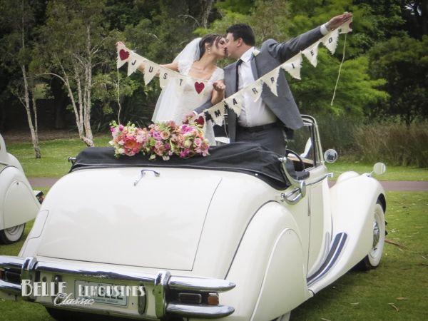 44 best wedding car decorations images on pinterest wedding cars classic wedding cars wedding car decorationswedding junglespirit Gallery