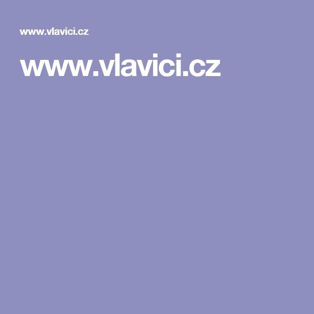 www.vlavici.cz