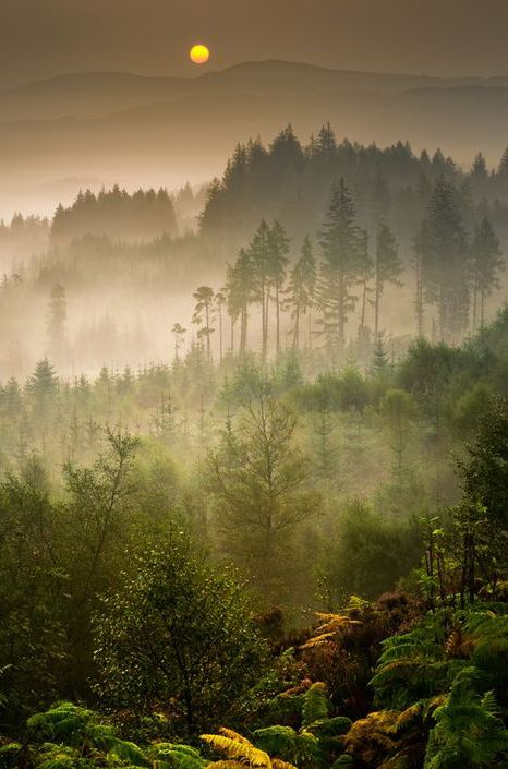 Dukes Pass, Trossachs, Scotland