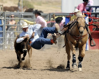 189 Best Rodeo Images On Pinterest Rodeo Rodeo Life And