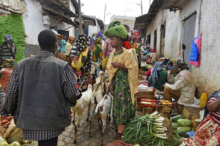 Marked i Harar, Etiopia.