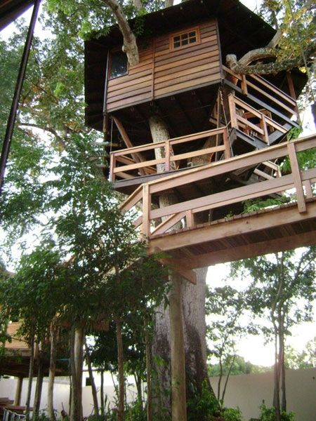 357 best tree houses and wendy houses images on pinterest for Tree house blueprint maker