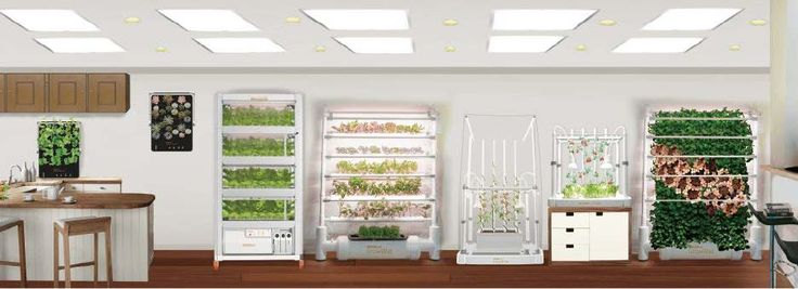 OPCOM® Farm's line of advanced indoor gardening systems enable anyone to easily grow their favorite vegetables, herbs, sprouts, flowers, fruits, and even medicine plants all year round. These next-generation soil-free gardens use hydroponic growing technology and proprietary full spectrum LED grow lights to enable 25% faster growth and approximately 90% less water than outdoor gardening. In addition, they eliminate the traditional challenges of weeding, pests and weather, enabling anyone to…