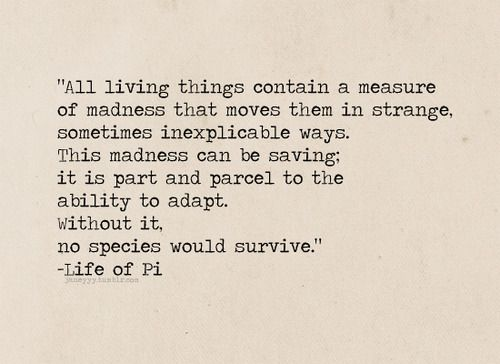 Life of pi survival
