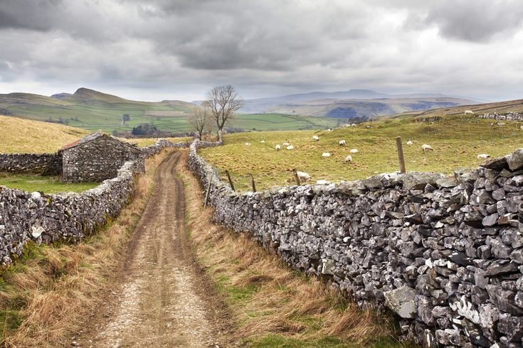 The Pennine Bridle Way near Stainforth in Ribblesdale, Yorkshire Dales, Yorkshire, England,... by robertharding on 500px