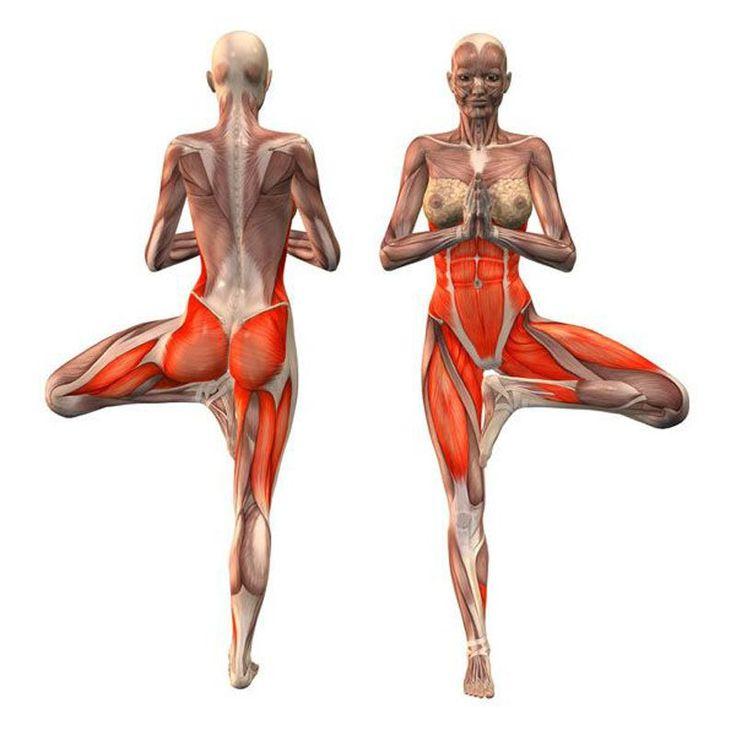 Упражнение«Живые суставы» при артрите