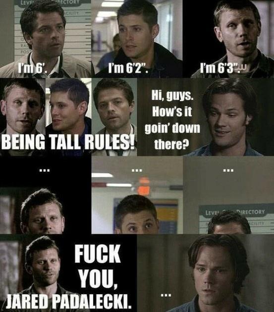 Supernatural Supernatural Supernatural: Geek, Misha Collins, Winchester, Supernatural, Jared Padalecki, Jensen Ackles, Funny, Fandom, Tall Men