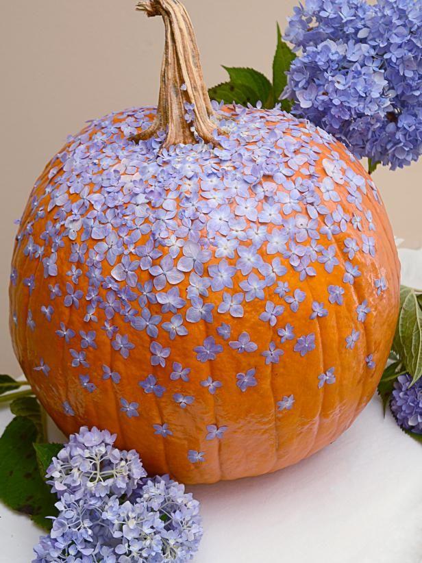Pumpkin carving ideas for beginners all hallows eve diy