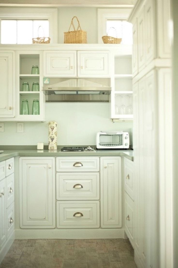 Small Crawling Bugs In Kitchen Tiny Bugs Youtube Tiny White Bugs In Kitchen Designalicious