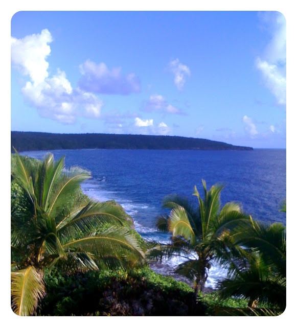 Niue http://www.travelbrochures.org/191/oceania/adventure-land-of-niue