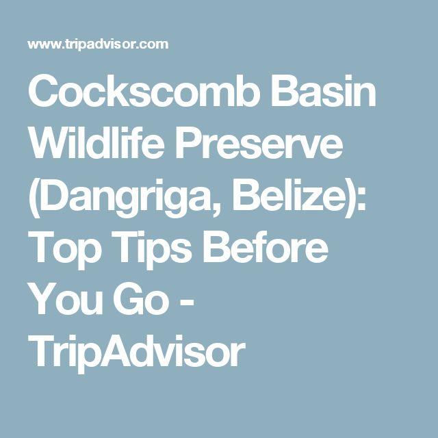 Cockscomb Basin Wildlife Preserve (Dangriga, Belize): Top Tips Before You Go - TripAdvisor