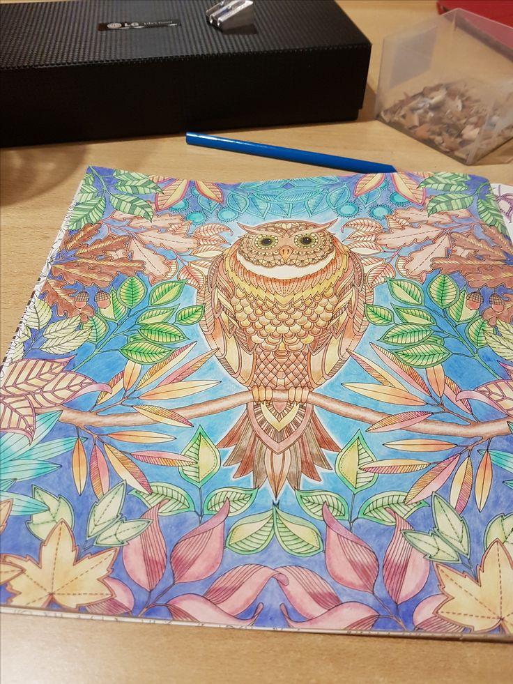 Johanna Basford - Secret garden - Owl