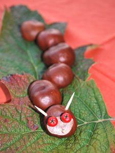Chestnut & acorn crafts for Kids