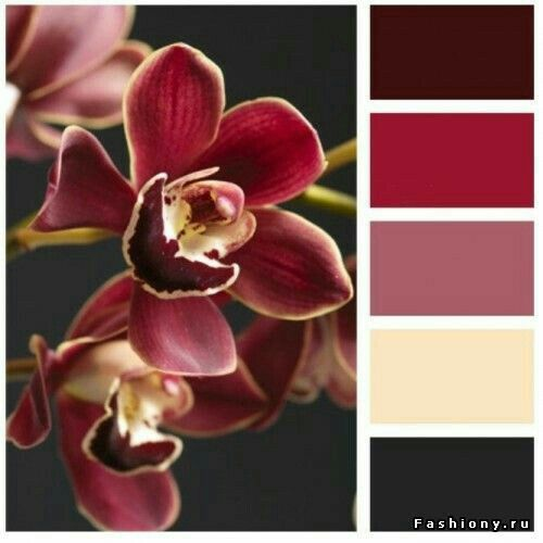 Rich orchid colours for a sophisticated quilt color scheme. Dark and dusky pinks with creamy yellow and chocolate brown.