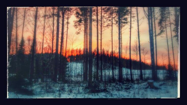 Beautiful sunset in Paloheinä Helsinki.