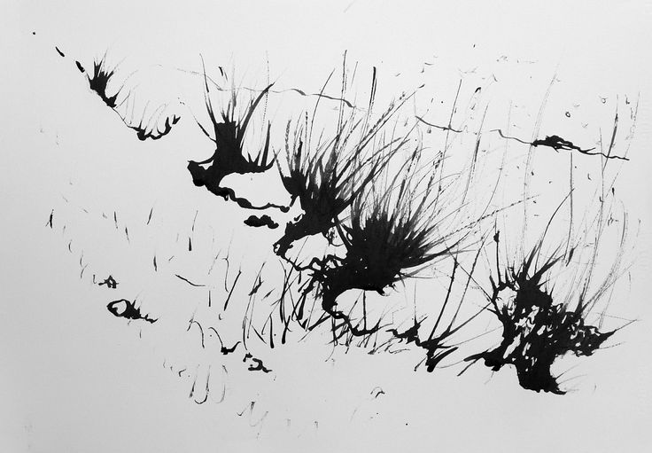 Willows at the River, ink on paper