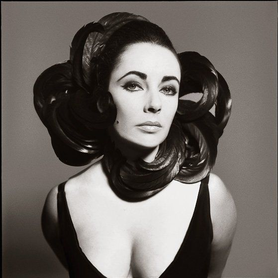 Beautiful black and white pictures from some of history's best photographers such as Parkinson, Clarke, Coffin, Horst, Gundlach, Palumbo, Huth and Avedon...