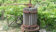 Σταφυλοπιεστήρια: Το πάτημα των σταφυλιών αποσκοπεί στη θραύση (διάσπαση) της ρώγας, στην εξαγωγή των χυμών του (γλεύκος) και στην προετοιμασία για το επόμενο στάδιο που είναι η συμπίεση για την εξαγωγή όλων των χυμών του.Επώνυμα αξεσουάρ και μηχανήματα που να καλύπτουν κάθε ανάγκη σας,θα βρείτε στο online κατάστημά μας.
