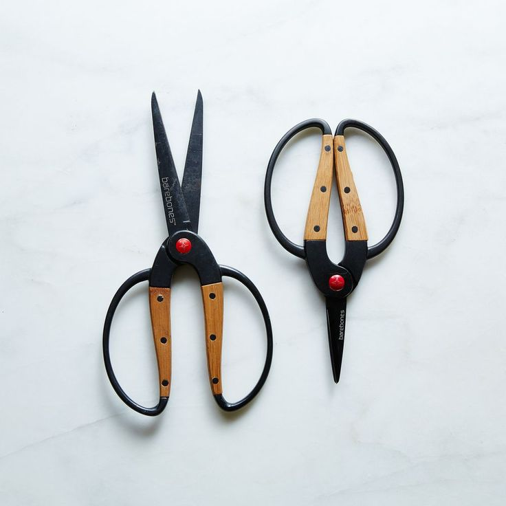 Barebones Garden Scissors on Food52