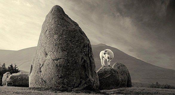 Photography Workshops with Photoshop   David Osborn