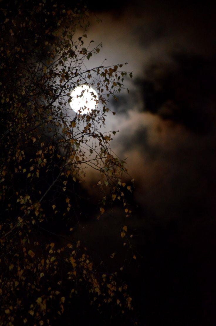 Måne over mitt hjem