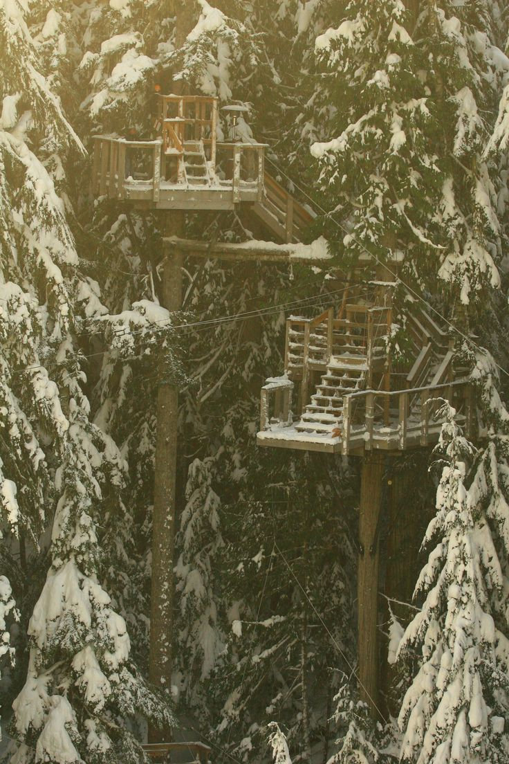 zip trek whistler. The twilight tour is exhilarating! You can't see where the platform is to land on! And the tour ends on a platform overlooking the village at night!