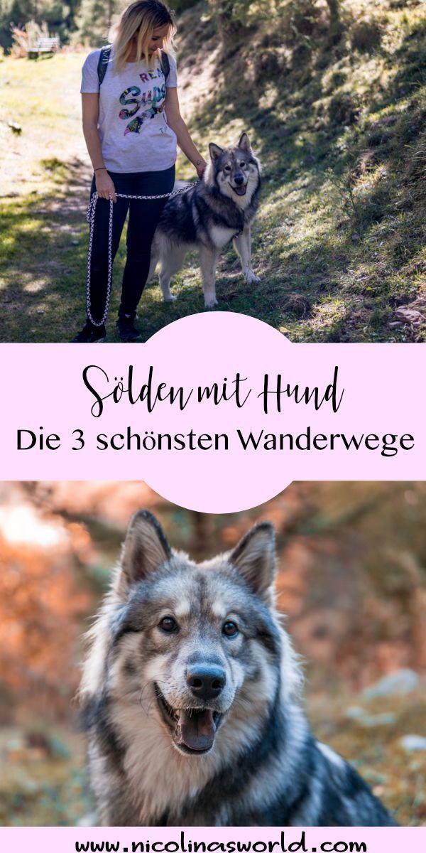 Wandern In Solden Reisen Mit Hund Nicolinasworld Hunde Wandern Urlaub Mit Hund