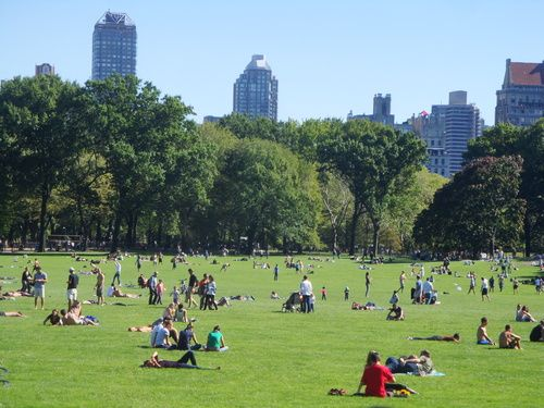 Cheapest Hotels Near Central Park New York City