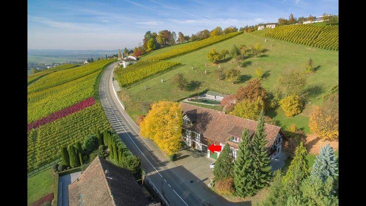 Riegelhaus mit Schwimmteich und Weitblick in Ottoberg bei Weinfelden