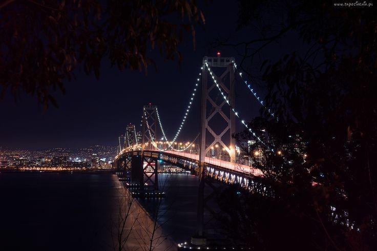 San Francisco, Oświetlony, Most Bay, Rzeka, Drzewa, Noc