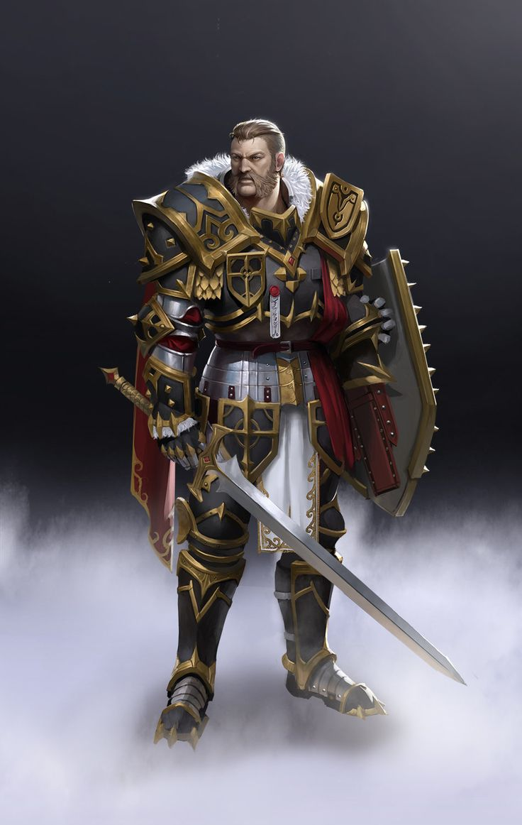 1359 best Fantasy Paladins & Knights images on Pinterest   Character concept, Character design ...