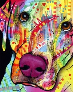 Colorful Labrador Retriever