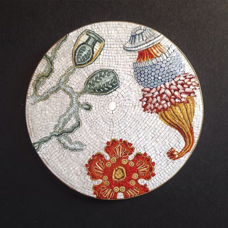 Today's beauty #mosaic #art made by @arte_mosaico: #mindenmozaik #everythingismosaic #artistic #muveszi #italy  #quattromani #fuorisalonemilano #micromosaic #microrganismi #fattoamano #madeinitaly #micromosaico #haeckel #smalti