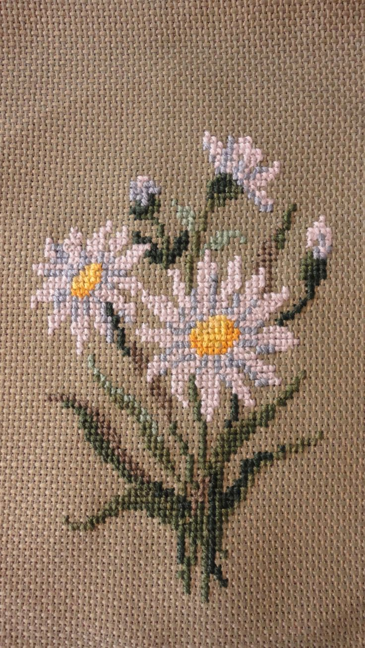 Cross stitch daisies